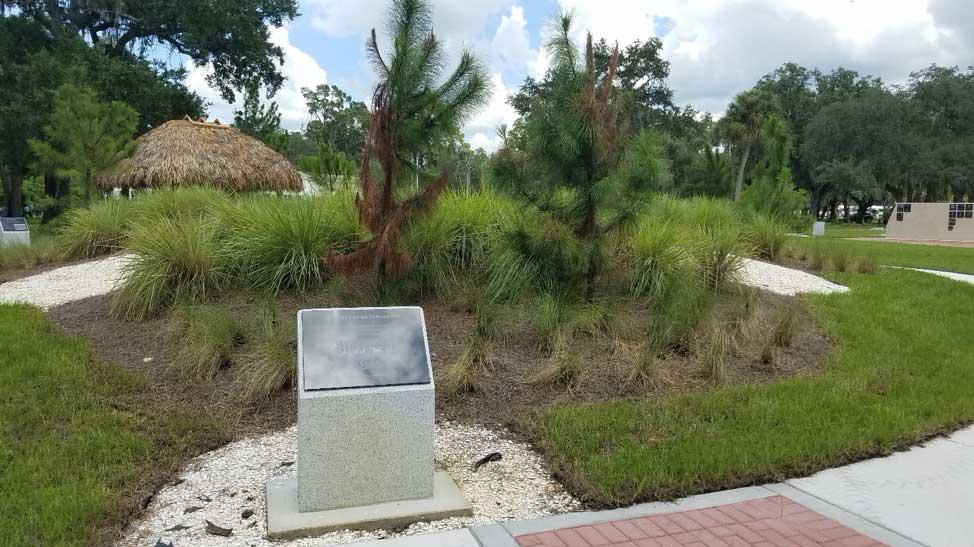 Seminole Indian War in Florida